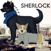Sherlock And John by freckledtrash