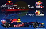 Red Bull RB5 by ShinjiRHCP