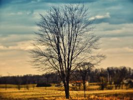 tree are our life by rowlee