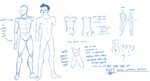 basic male anatomy by Whippe