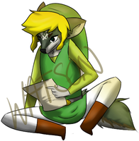 Link Pose by donuttouch