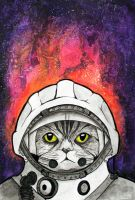 Cosmonaut Cat 2 by VandaLann
