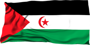 Flags of the World: The SADR by MrAngryDog