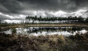 Moor by SeeLandscapes