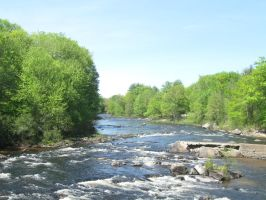 May 2010 on the Contoocook by crazygardener