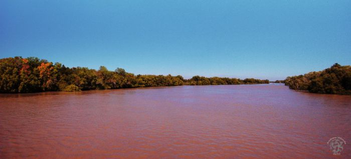 Adelaide River, NT. by woodsy900