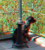 Watching (anaglyph) by EliteJohan
