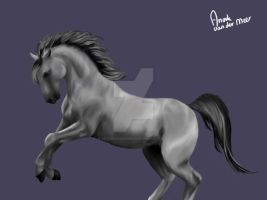 Photoshop horse by AnoukvanderMeer