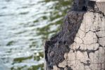 Crumbled concrete wall against water stock by croicroga