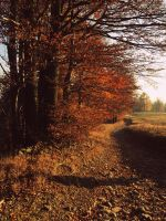 Autumn Reminiscence II by Topielica666