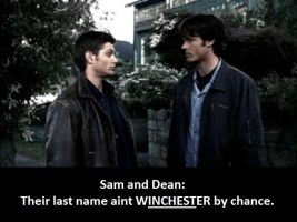 Sam and Dean Wincester by PsychPsych-o
