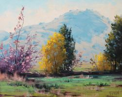 Tumut Autumn by artsaus