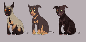 Marcus x Gabby litter by boarbarian