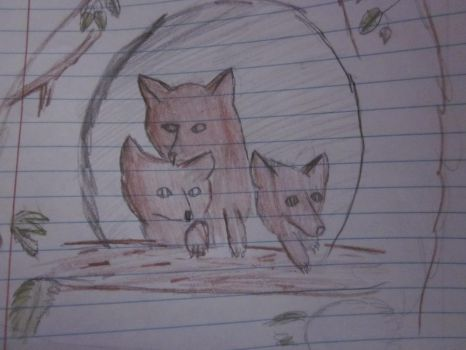 foxes in a cave by racheleatspie