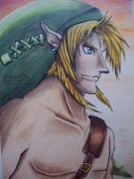 link. by bowseganonlink