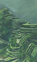 Rice Terraces Speed Paint by Eliket