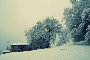 Stalla, vista innevata retro by WelshGlue