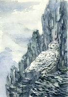 -Postcrossing: Snowy Owl- by RiEile