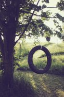 Tire Swing by akrPhotography