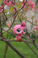 Pink Owl in the Park by Dellessanna