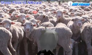 NWizard meets a sheep flock by GWizard777