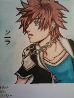 Kingdom Hearts II~ Sora by Millie-Rose13