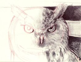 Bubo bubo sketch by Psamophis