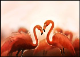 Flamingo by GaudiBuendia