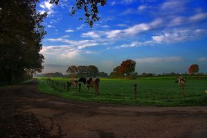 Countrylife by chevyhax