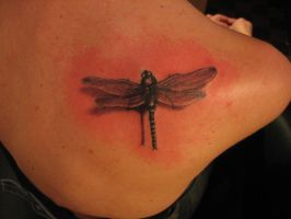 dragonfly by inkfusiontattoo