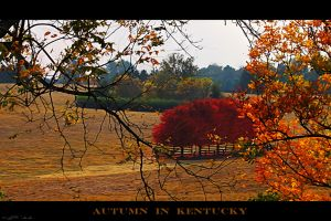 autunm in kentucky by istarlome