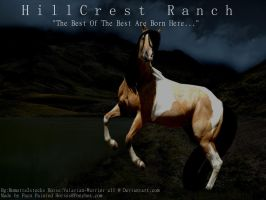 Hillcrest Ranch Entry by Paco-Taco14