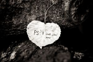PS I Love You IIII by thesashabell