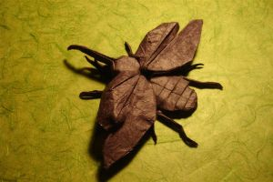 Flying Hercules Beetle by origami-artist-galen