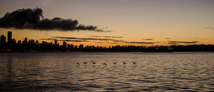 Vancouver Fall by bens1n
