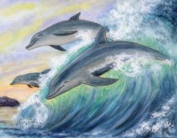 Dream of Dolphins by dreamstone