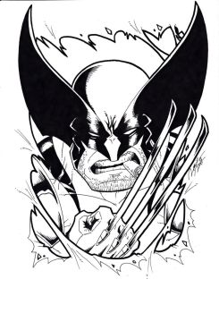 Wolverine Black and White by Ronniesolano