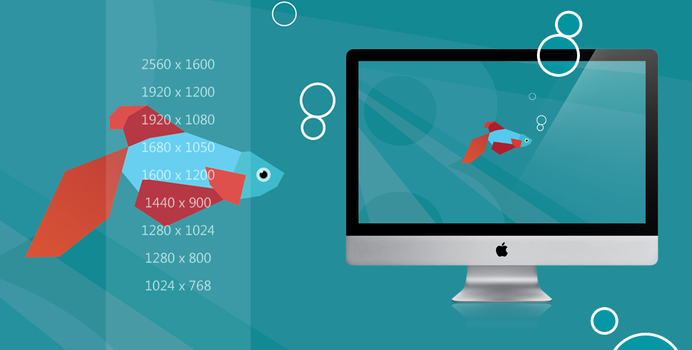 Windows 8 : Beta Fish wallpaper pack by Draganja
