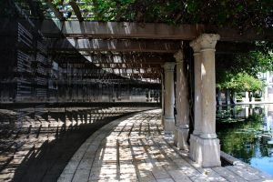 Arbor of History by ahley