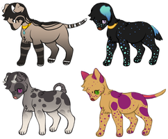 Wappin Pup Adopts :OPEN: by PilusAdopts