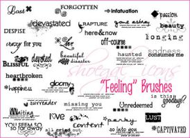 "100x100 ""Feelings"" Brushes by kissncontrol"