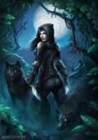 Wolf Assassin by NikolaiOstertag