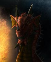 Seigneur of the Flame by TargonRedDragon