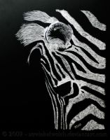 Zebra on BlackBoard by TinasArtwork