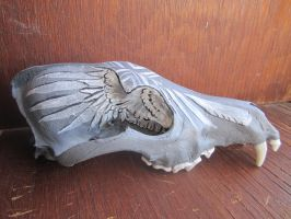White Raven Coyote Skull Side View by Kdaea
