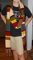Season 12.5 Doctor Who scarf by Pos-Sess-ed