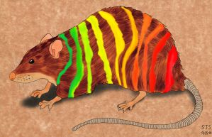 Striped Rat Commission by fantreasureplanetljs