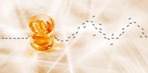 Drunken ants by sharadhaksar
