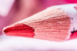 Pencil Macro by LiviaVi