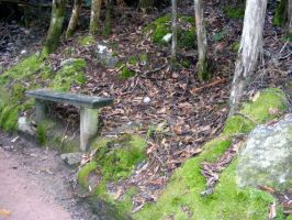 Seat In Woods 02 by Gracies-Stock
